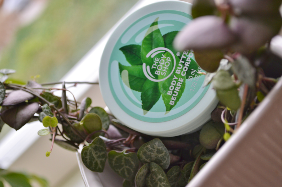 Den skønneste serie fra The Body Shop Fuji Green Tea