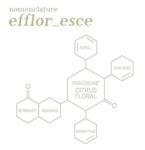 nomenclature efflor esce 3